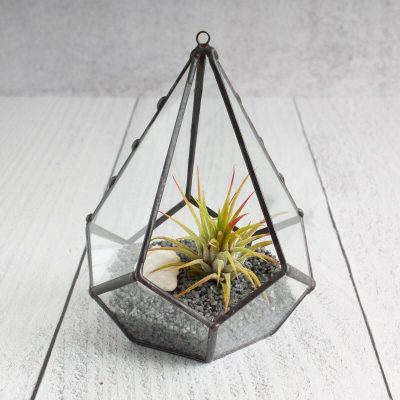 Stained Glass Tiny Teardrop Terrarium Air Plant Holder