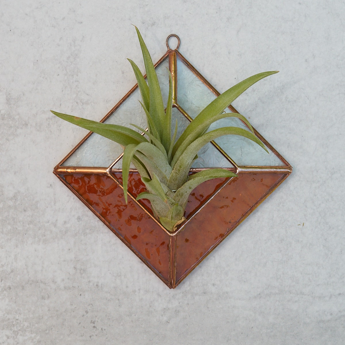 love suncatcher window hanging Birthday gift Mother/'s Day housewarming plant lover Stained Glass *Includes real air plant* Holder